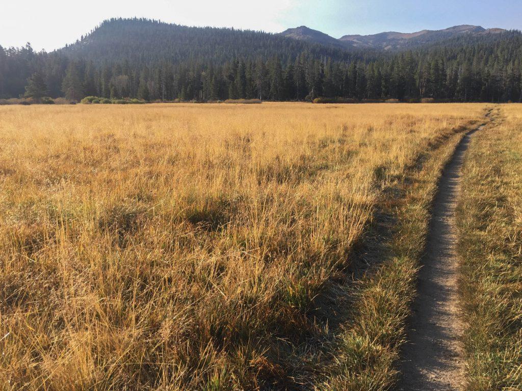 big-meadows-1