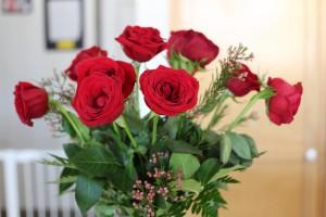 Rose2 © ACEQ