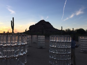 An art display in the Desert Botanical Garden in Phoenix at sunset.
